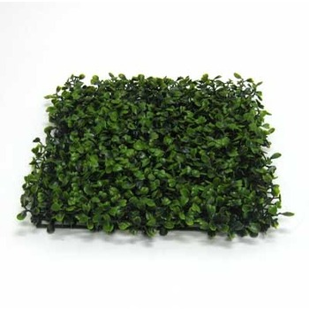 U V Treated Boxwood Mat