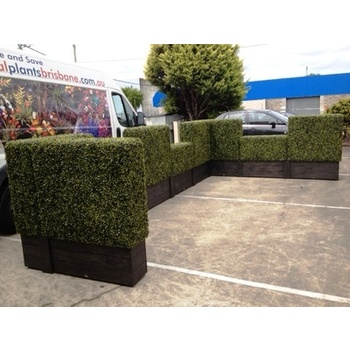 Boxwood Hedge Hire Package - Rustic x9