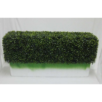 Boxwood Hedge Insert