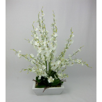 Cream Orchid Arrangement