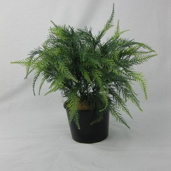 UV Cypress foliage