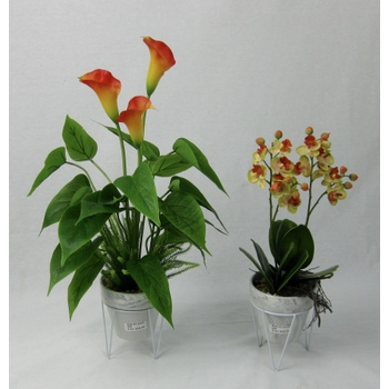 Exotic Arrangements set of 2