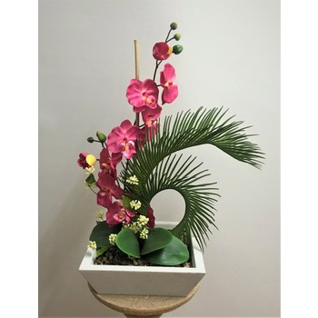 Cerise Orchid in Marble Fibreglass Container