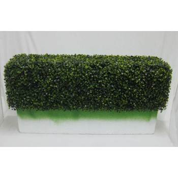 Boxwood Hedge Insert - Deluxe