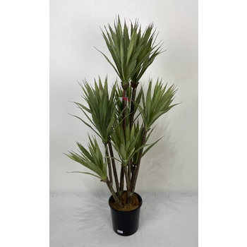 Sisal Tree Double