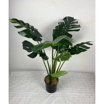 UV Monstera Plant