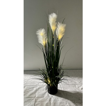 Pampas Grass w/ LED
