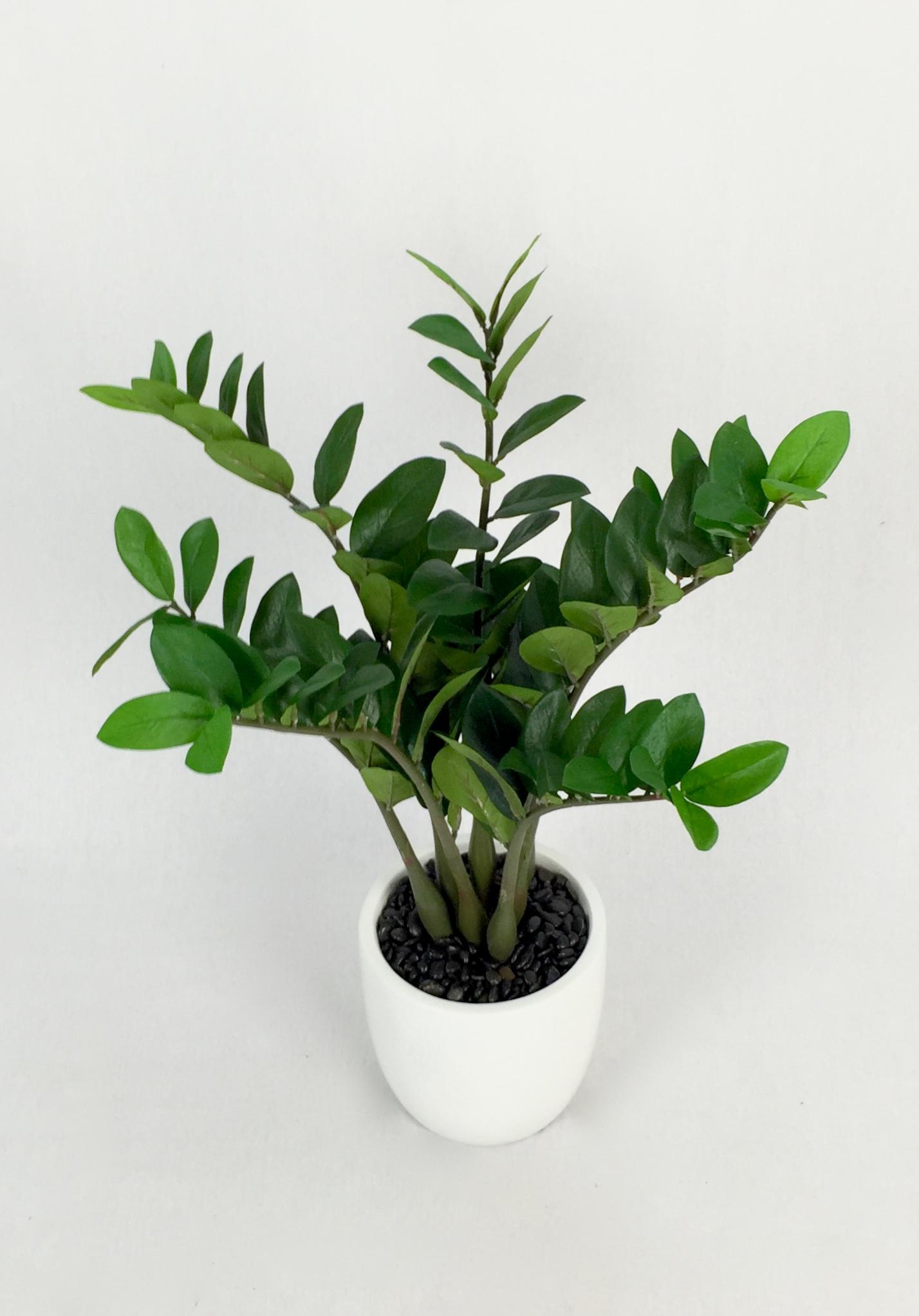 Artificial Plant Importers Australia Trees Flowers